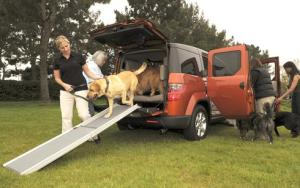 They call it puppy love: Honda's dog-friendly Element